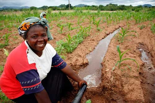 African Irrigation