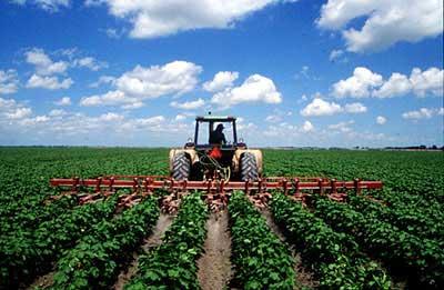 ICID : Working Group on On-Farm Irrigation Systems (WG-ON-FARM)
